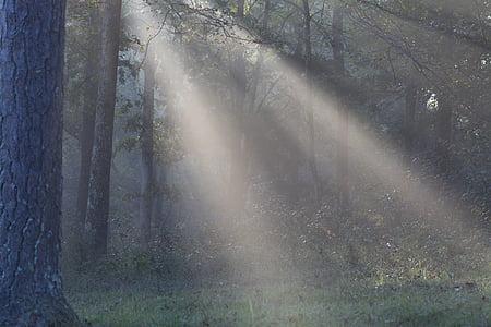 Sonne-Licht, Sonnenschein, Strahlen, Sonnenstrahlen, Sonnenstrahl, Landschaft, natürliche
