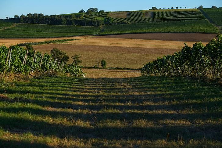 Lane, maastik, loodus, ära, Outlook, Panorama, roheline