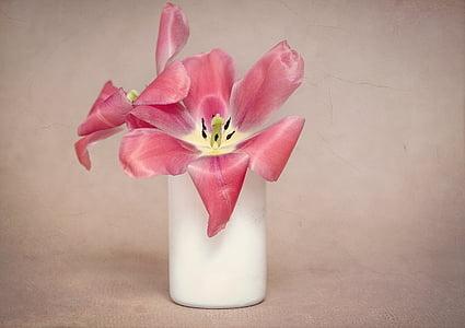 flors, tulipes, Rosa, pètals, tulipes Roses, Gerro, vaixell