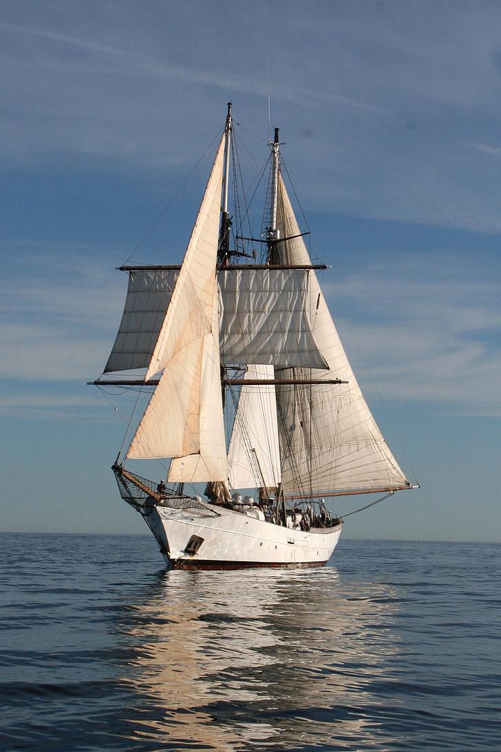 Clipper, segel, båt, Ocean, havet, fartyg, nautisk