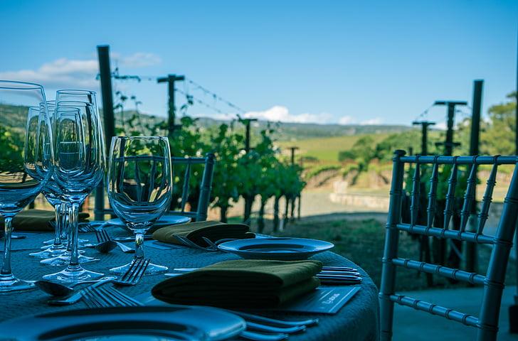 veini, Napa valley, Vineyard, Napa, California, viinapuu, Grapevine