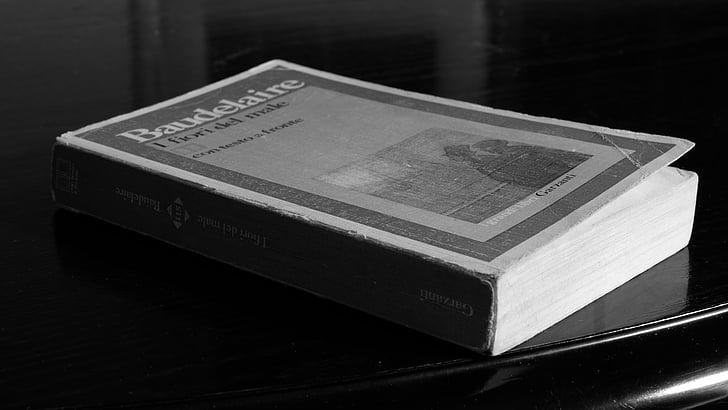 boek, wit zwart, literatuur