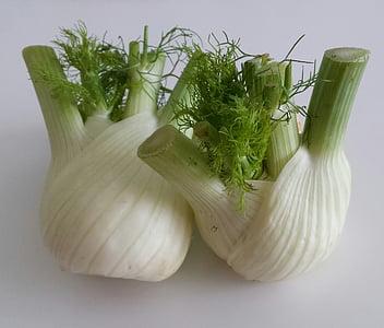 Komorač, povrće, zdrav, hrana, Frisch, gomolja, vitamini