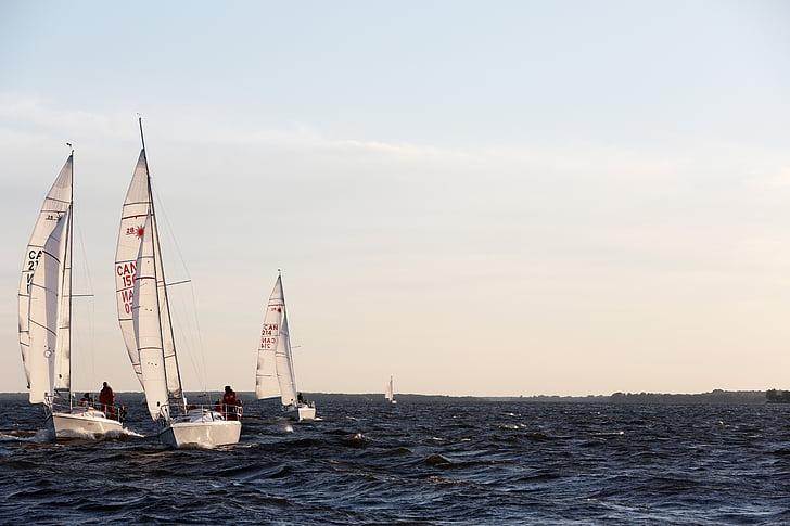 sailboats, ocean, sea, water, horizon, sky, nature