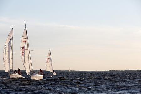 Barche a vela, oceano, mare, acqua, orizzonte, cielo, natura