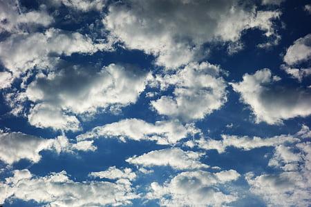 núvol, cel, núvols del cel blau, cels, sol, l'estiu, temps