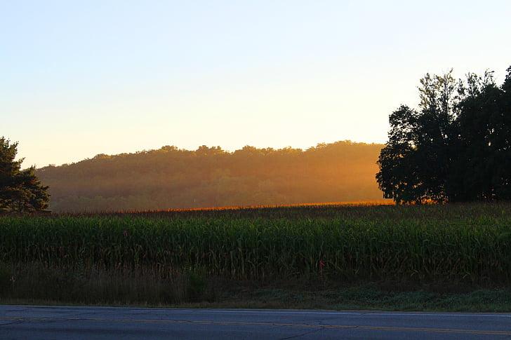 ánh sáng mặt trời, Trang trại, lĩnh vực, Thiên nhiên, lĩnh vực nông trại, cảnh quan, nông nghiệp