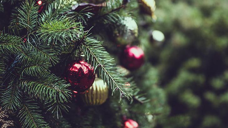 คริสมาสต์, ลูกคริสมาสต์, ตกแต่งคริสต์มาส, ต้นคริสต์มาส, อย่างใกล้ชิด
