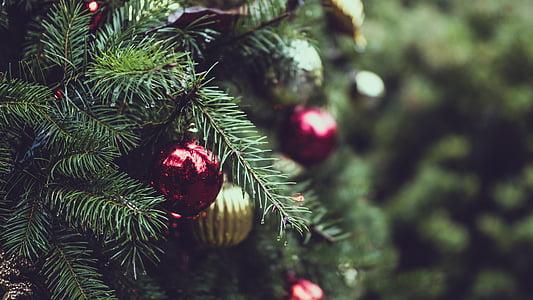 Nadal, boles de Nadal, decoracions de Nadal, arbre de Nadal, close-up