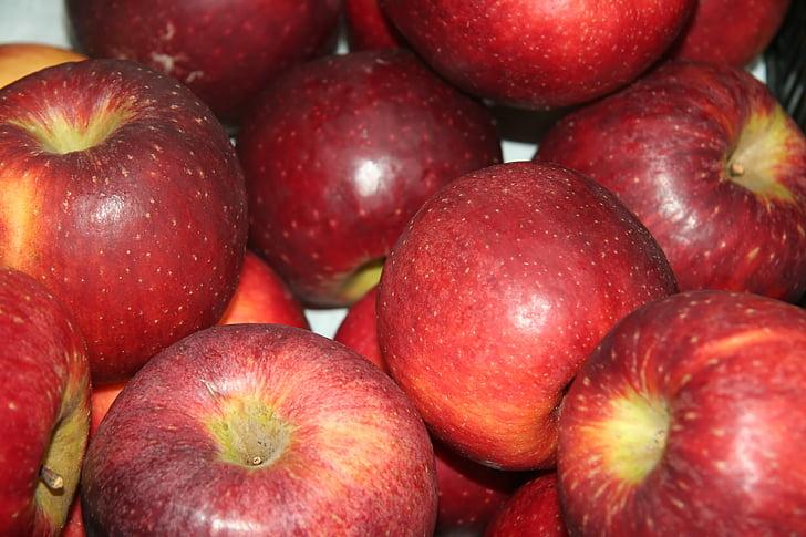 Poma, fruita, temporada de fruita, vermell
