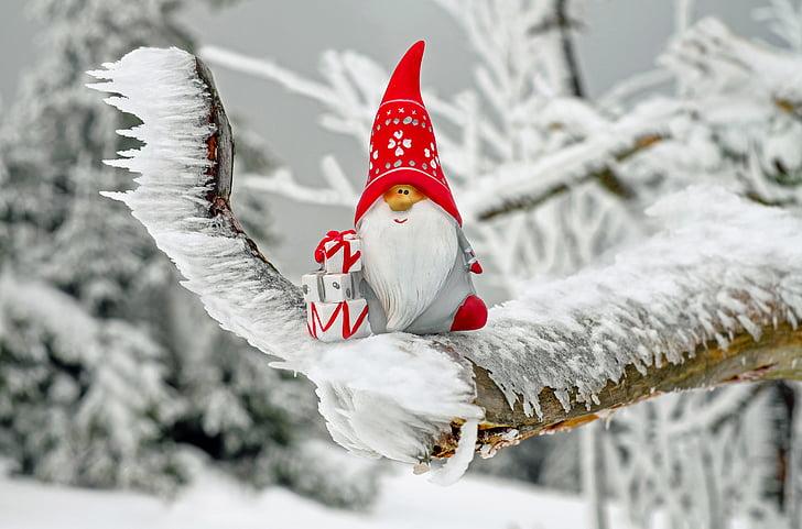 ซานตาคลอส, คริสมาสต์เด่น, รูป, นิโคลัส, imp, ของขวัญ, ฤดูหนาว