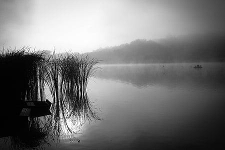Αυγή, δίπλα στη λίμνη, φύση, προκυμαία, επιφάνεια του νερού, κατηγοριοποίηση, νερό