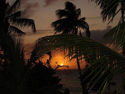 Carib, posta de sol, l'estiu, viatges, vacances, vacances, oceà