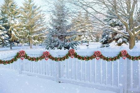 prop blanca, Nadal, Garlanda, tanca, l'hivern, piquet, blanc