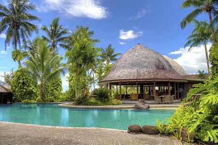 Hotel, luxe, palmeres, paradís, piscina, relaxació, complex