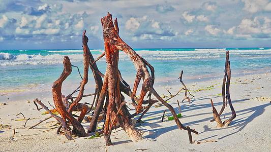 beach, cuba, varadero, landscape, ocean, the coast, the waves