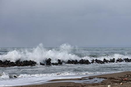 Mar, platja, ona, arrencats, natural, paisatge, tempesta
