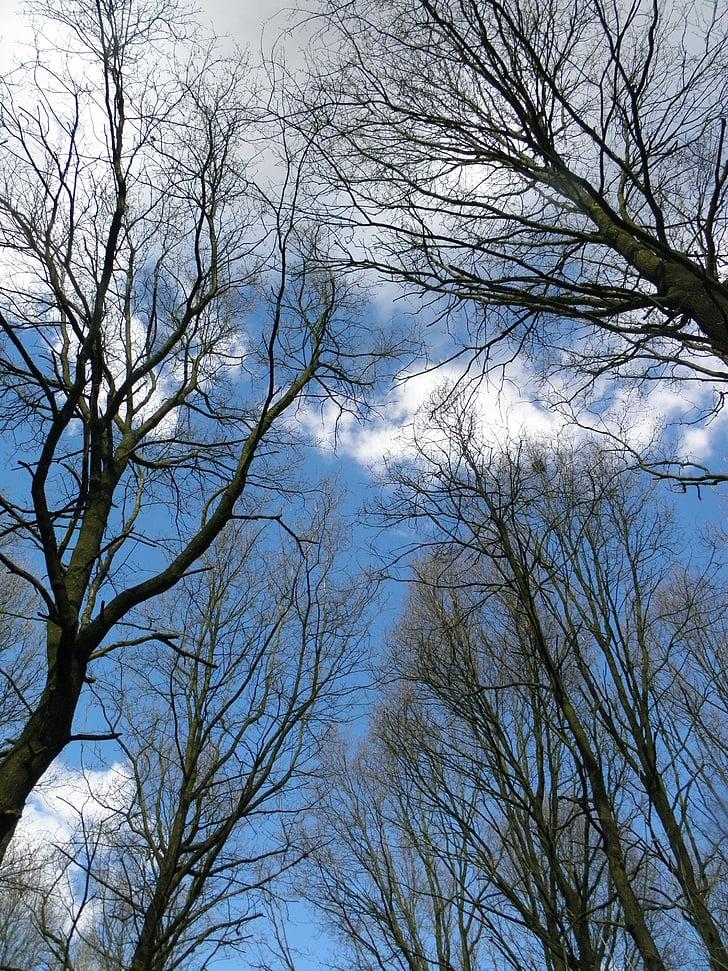 Wow 13 Gambar Tumblr Aesthetic Langit Sugriwa Gambar