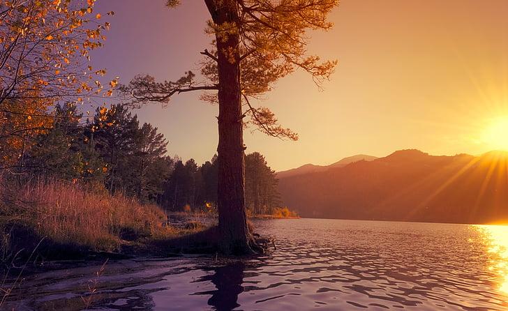nature, landscape, river, sun, water, sunset, evening