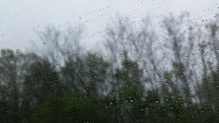 βροχή, καιρικές συνθήκες, παράθυρο, σταγονίδια, βρέχει, υγρό, δέντρα