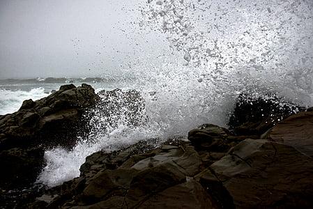 plaj, gün ışığı, manzara, hareket, doğa, okyanus, açık havada