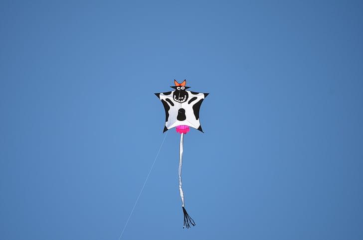 leija, lehmä, eläinten, taivas, utareet, Cow animal, sininen