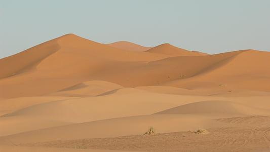 duny, písek, poušť, Sahara, Maroko, písečné duny, písečné duny