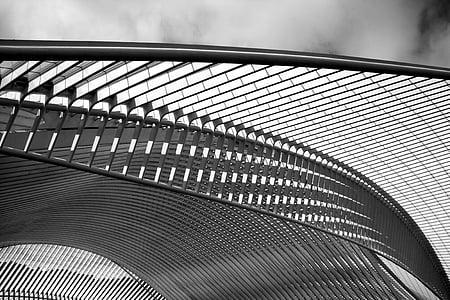 Santiago calatrava, Arquitecto, estación de tren, Lieja, corcho-guillemins, estación de tren, arquitectura
