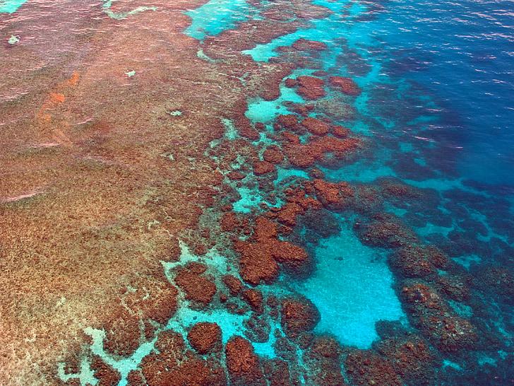 great barrier reef, diving, coral, ocean, pacific, aerial view, australia