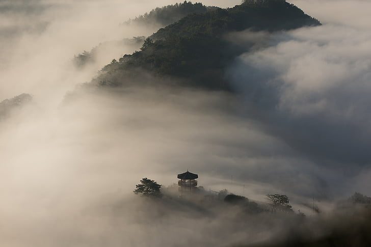 pendakian, kayu, palgakjeong, awan, Gunung, Angin, memanjat pohon