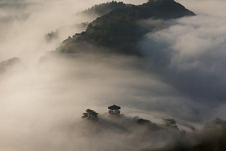Восхождение, Вуд, Пхальгакчжон, Облако, Гора, Ветер, лазить по деревьям