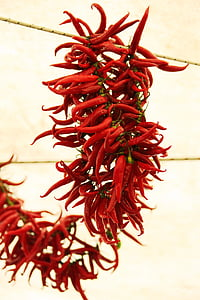 bunch, chili, chilli, color, cooking, dried, dry