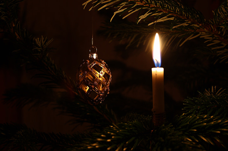 คริสมาสต์, ต้นคริสต์มาส, ตกแต่งคริสต์มาส, ไฟคริสต์มาส