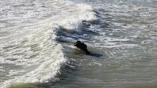 hullám, rock, tenger, természet, víz, Beach, hab