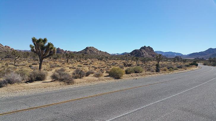 pustinja, zavojitom cestom, suha, autocesta, krivulja, slikovit
