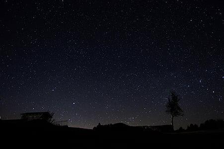 cel de nit, cel estrellat, estrella, cel, nit, natura, fosc