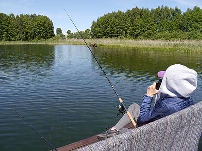 ryby, jezero, voda, Laguna, rybník, ticho, klid v duši