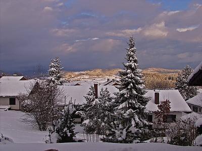 Bavarski gozd, krajine, pozimi, Nemčija, Bavarski, razpoloženje, sneg