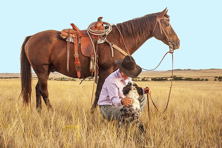 Ljudi i životinje - Page 17 Cowboy-horse-dog-pasture-preview