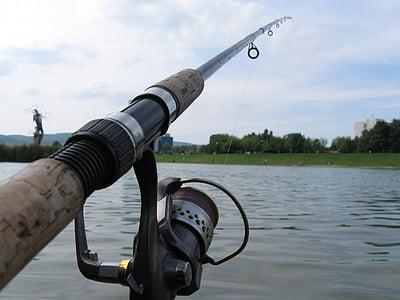 fishing, rod, water, catch fish, outdoors, fishing Reel, nature