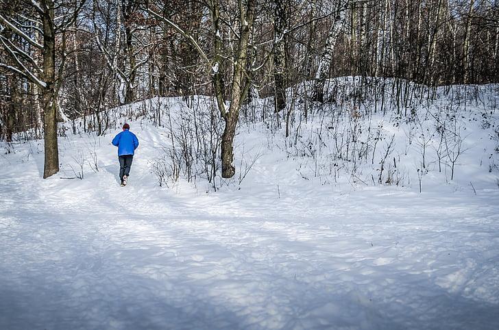 skriešanas, ziemas, sniega, koks, daba