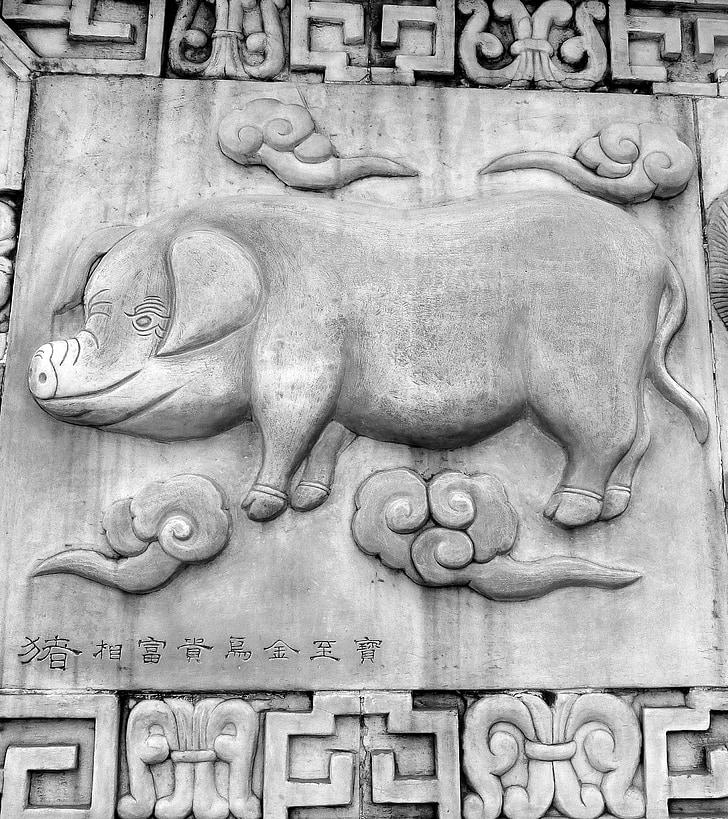 Hai, varken, Chinese Horoscoop, dieren, Chinees, Horoscoop