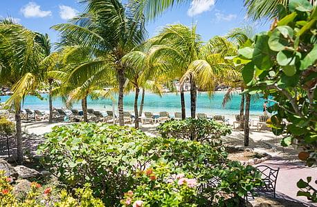 Курорт, Карибський басейн, Кюрасао, подорожі, пляж, води, океан