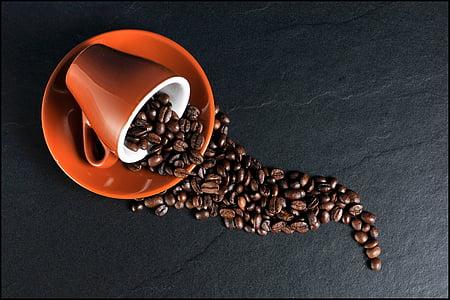 Kawa, Puchar, ziarna kawy, filiżanka kawy, fasola, fasola, Kofeina