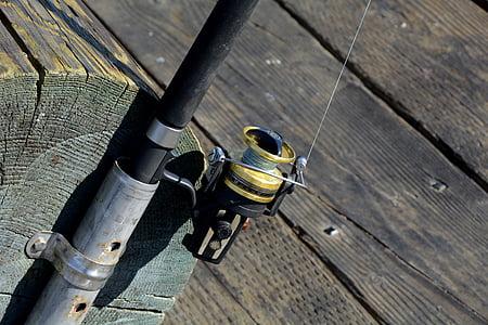 fishing reel, fish, fishing rod, hobby, peaceful, coast, fishing line
