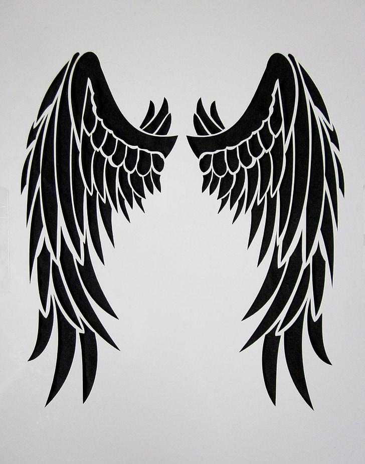 крило, чорний, перо, птах, чорні крила, чорний Енгель, Метелик