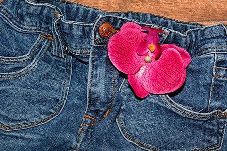 牛仔裤, 裤子, 服装, 蓝色牛仔裤, 关闭, 兰花花