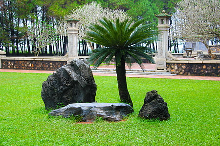 jardin de rocaille, Japonais, Zen, jardin, Rock, Pierre, jardin japonais
