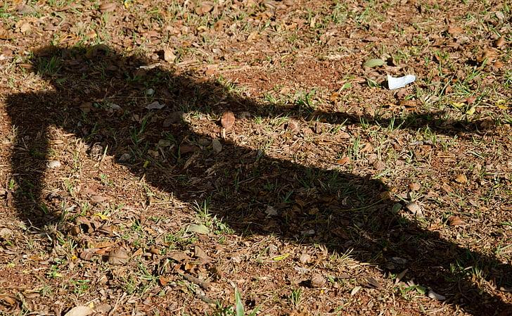 skugga, Flicka, påbörjad, gräs