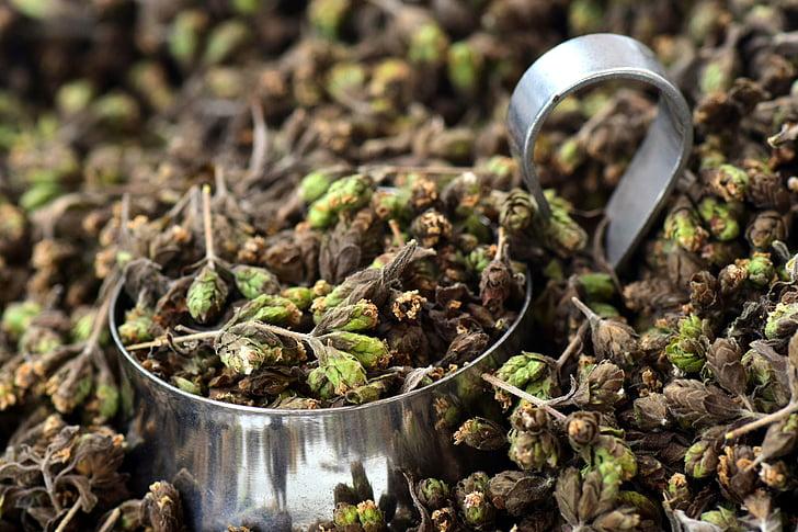 origan, épice, fines herbes, saison, faire cuire, méditerranéenne, arôme